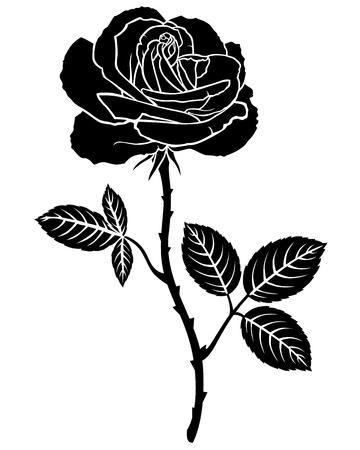prickles: Immagine Silhouette di bel fiore rosa Vettoriali