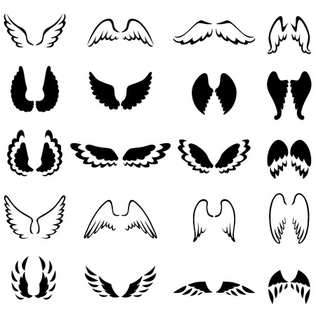 animal angelic: Set of contour and silhouette different wings