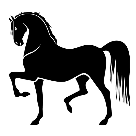 gait: Vector illustrations of silhouette of proud horse galloping trot and beautiful arching neck