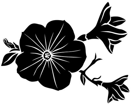 petunia: Vector illustrations of silhouette of beautiful petunia flower Illustration