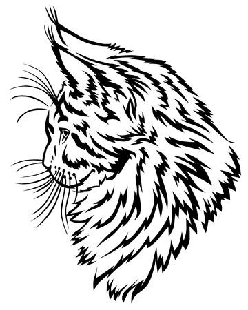 lince: Ilustraciones del vector imagen de contorno de r�faga hocico perfil Maine Coon de Vectores