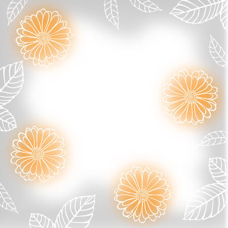 calendula: Greeting blur background with white contour calendula flowers and leaves