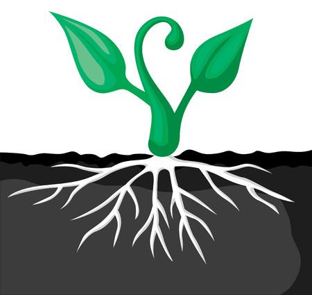 Vector illustrations of set of cartoon plants sprout Illustration