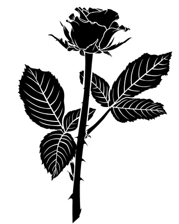 flowering: Vector illustrations of silhouette of a beautiful flowering rose bud with two large leaves