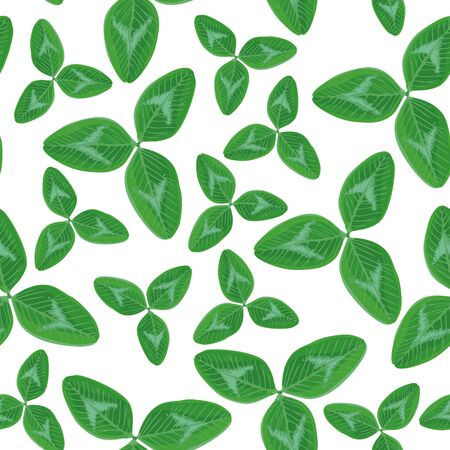 Vector illustrations of  seamless pattern with clover leaves on white background Vector