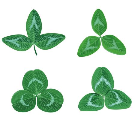Vector illustrations of set clovers leaf trefoil for St. Patricks Day Vector