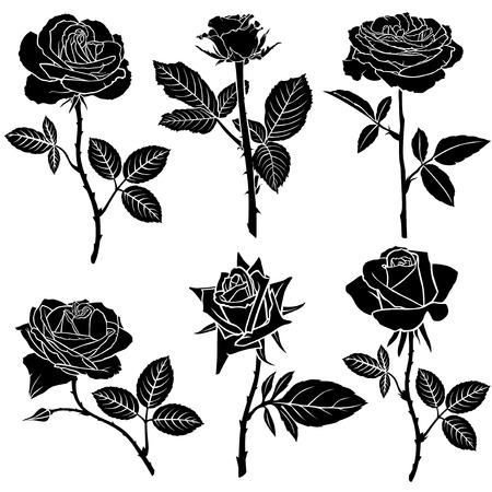 美しいバラの花のセットのシルエットのベクター イラスト