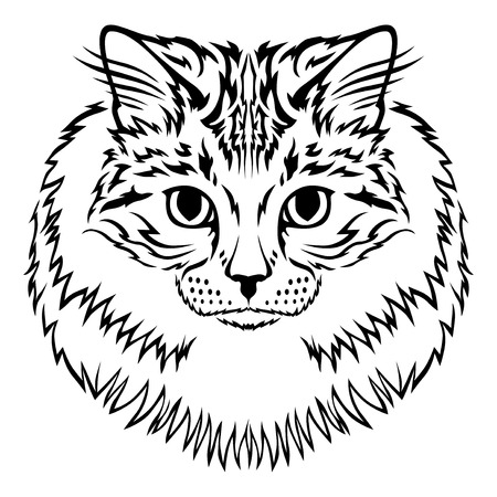 furry: Vector illustrations of contour image of muzzle furry Siberian cat