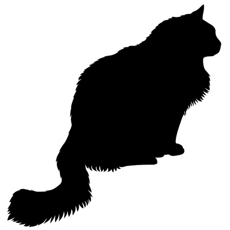 furry: Vector illustrations of silhouette of black furry cat in profile