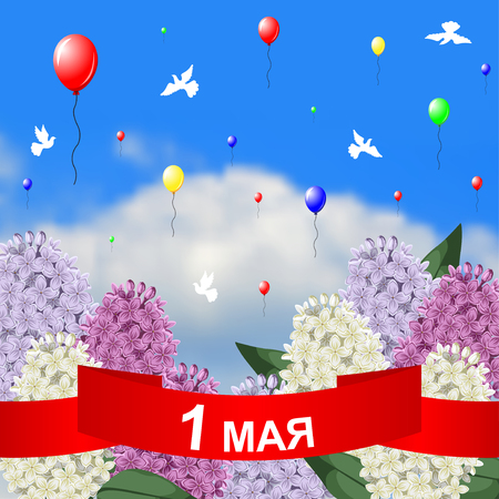 Vector illustrations of May 1 congratulatory card with red ribbon, lilacs branches on sky background