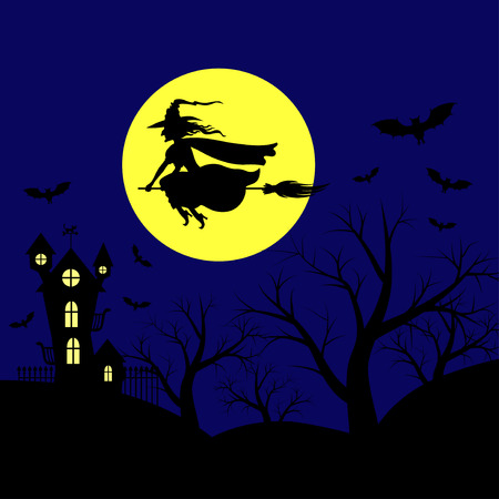 lady fly: Vector illustrations of Halloween landscape with witch on broomstick flying in sky against background of moon