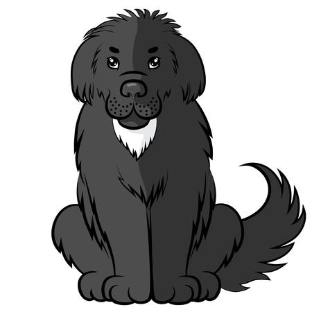Vector illustrations of cartoon black big furry dog