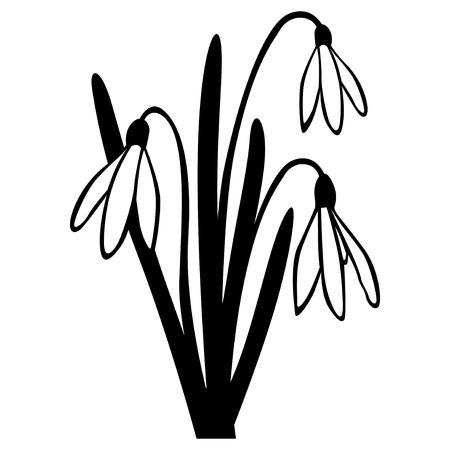 Vector illustraties van Sneeuwklokje lentebloem