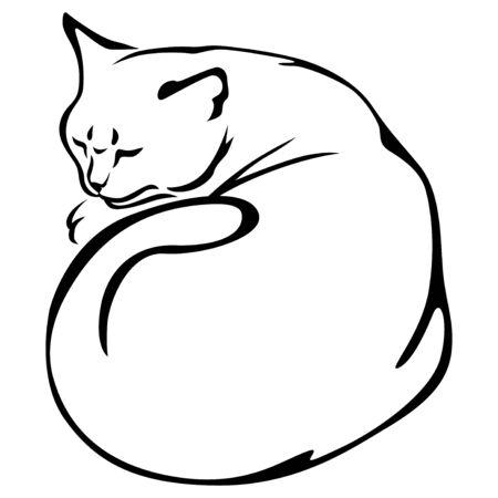 slips: Illustrations of contour of slip cat