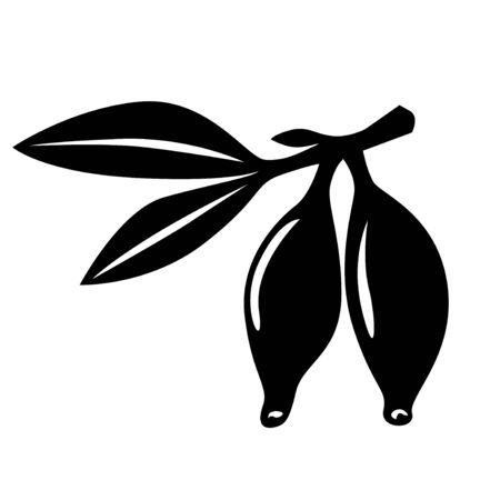 honeysuckle: Vector illustrations of silhouette of honeysuckle berries isolated on white background