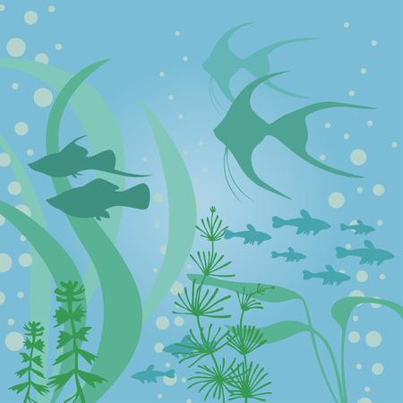 scalar: Vector illustrations of aquarium background with fish and algae