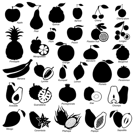 Vector illustrations of fruits set