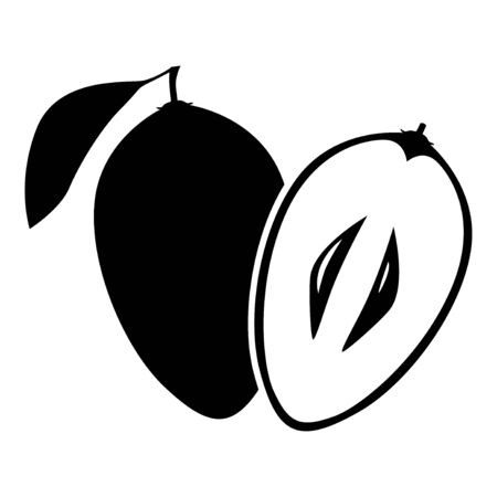 Vector illustrations of sapodilla fruit