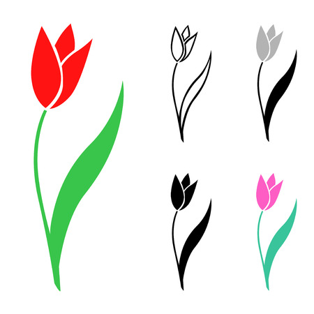 Vector isolated illustrations of tulips flowers set Çizim