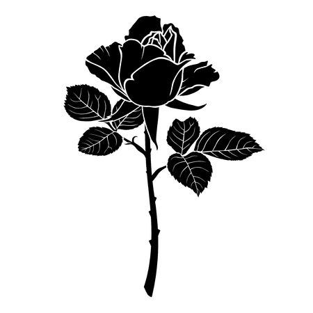 Vector illustrations of silhouette of a rose flower