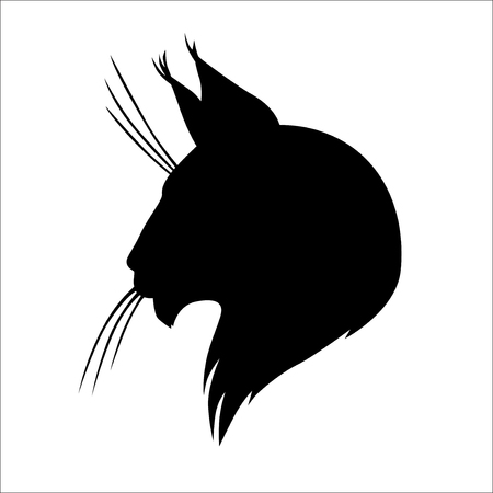Vector illustrations of Maine coon cat silhouette head