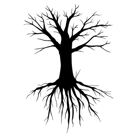 Vector illustrations of big old tree without leaves