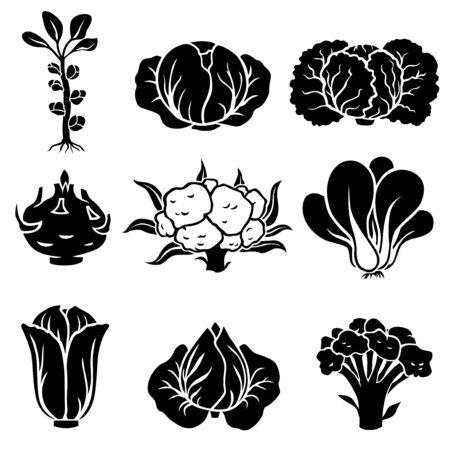 Vector illustration of cabbage silhouette icon set Ilustração