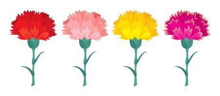 Vector black and color carnation flowers set