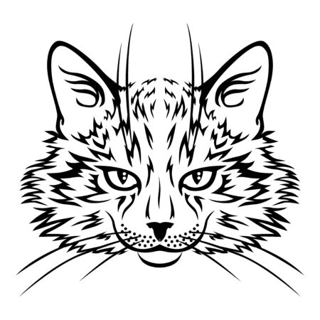 Vector illustrations of muzzle frowning cat