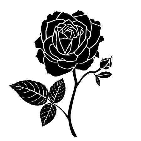 Vector illustrations of silhouette of a rose flower with bud