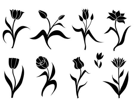 Vector illustrations of silhouette set of decorative tulips