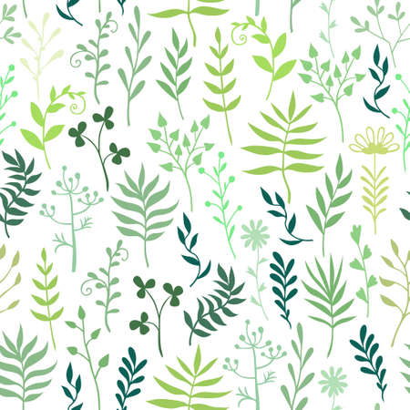 Vector illustrations of decorative herbals, branches and flowers pattern seamless