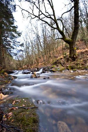 Mountain river flow between stones