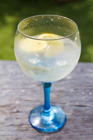 Selective focus of a gin tonic glass with lemon. photo
