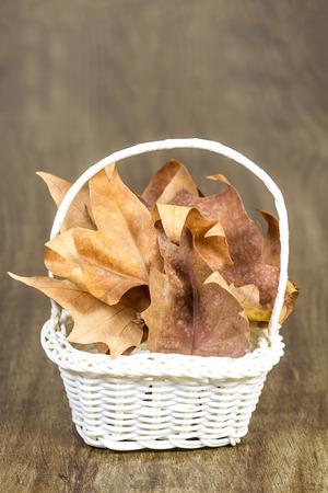 hamper: Studio shot of a wicker hamper full with dead autumn leaves