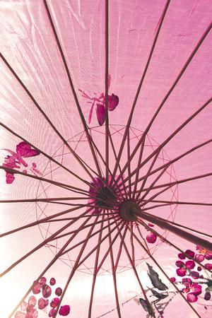 ornated: Direttamente sotto tiro di un ombrello ornato giapponese