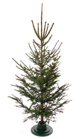 Empty christmas tree, isolated on white