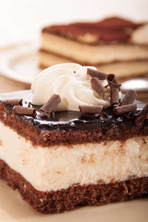 Slice of chocolate cream cake, on a plate