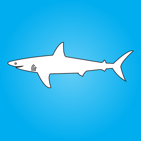 Drawn shark Vector
