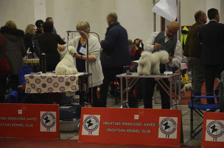 fairs: Zagreb, Croatia. The last day of CACIB - International Dog Show in Zagreb which is being held at the Zagreb Fair, attracted a large number of visitors and exhibitors