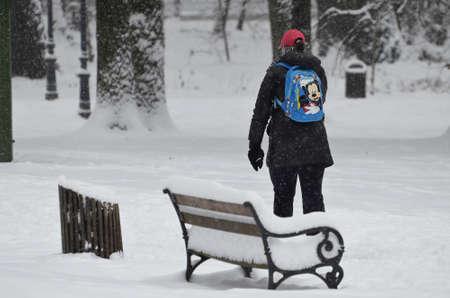 heavy snow: Zagreb,Croatia. 03 Jan 2016.Croatian weather: Heavy snow in park Maksimir.