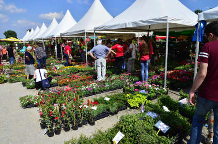 show garden: Zagreb,Croatia. 30 May 2015. 50th Floraart - international garden show Floraart celebrating 50th birthday in the park Bundek.