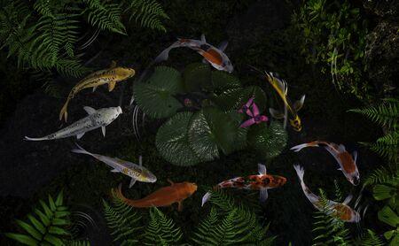Koi-Fische in einem Teich mit Grünpflanzen und Lotusblumen