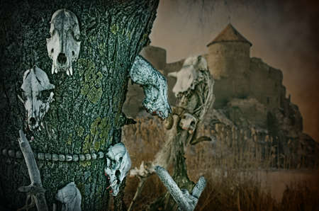 Gothic skulls of zoons on a tree on a old fortress photo
