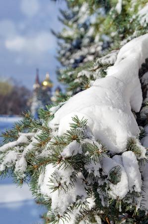 Postcard winter spruce with snow Christmas Orthodox domed church with blur bokeh Zdjęcie Seryjne