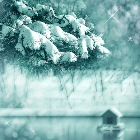 Christmas background with snowy fir trees winter pond