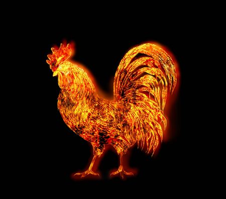 colorful Fire rooster. symbol of the Chinese New Year. Fire bird, red cock. Happy New Year 2017 card Zdjęcie Seryjne