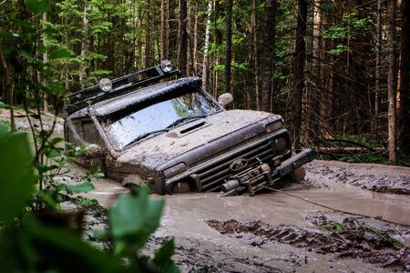 Extreme driving, challenge and 4x4 vehicles concept. Offroad race in forest. SUV or offroad car 版權商用圖片