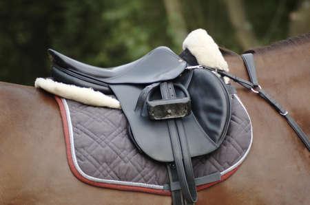 saddle: Saddle on a brown horse