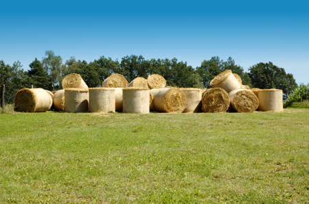 Many straw bales photo